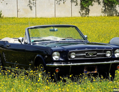 Ford Mustang Cabriolet à Courtry (Seine-et-Marne)