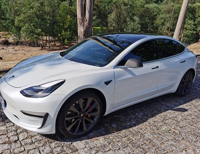 Tesla Model 3 Grande Autonomie Performance à Le Pouzin (Ardèche)