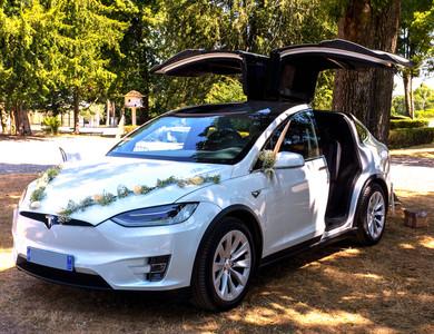 Tesla Model X Raven Grande Autonomie à Le Pouzin (Ardèche)