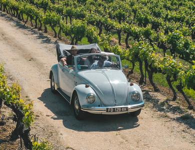 Volkswagen (vw) Coccinelle Cabriolet à L'Isle-sur-la-Sorgue (Vaucluse)