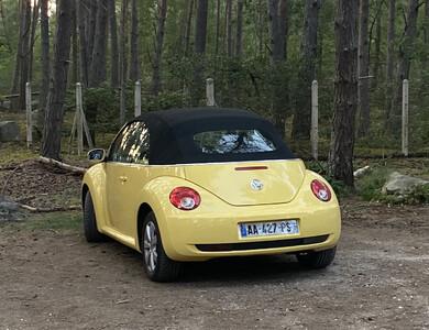 Volkswagen (vw) New Beetle Cab à Châtillon (Hauts-de-Seine)